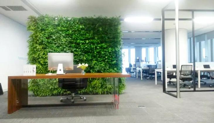 Thiết kế thi công văn phòng cao cấp PV DRILLING