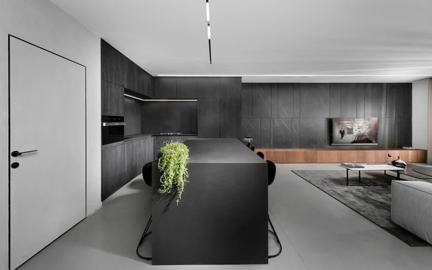 Tường phòng khách nối tiếp với nhà bếp hình chữ L màu đen tạo tỷ lệ hình ảnh cân đối với kết cấu trang nhã.