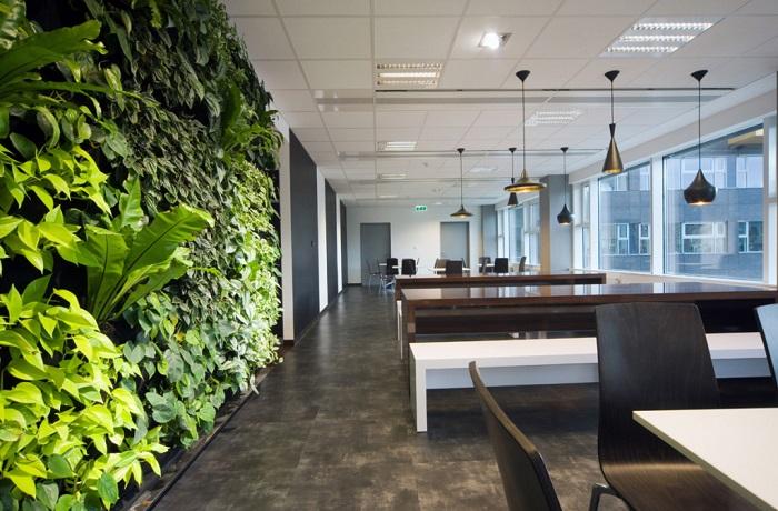 không gian  văn phòng xanh hiện đại, thân thiện môi trường