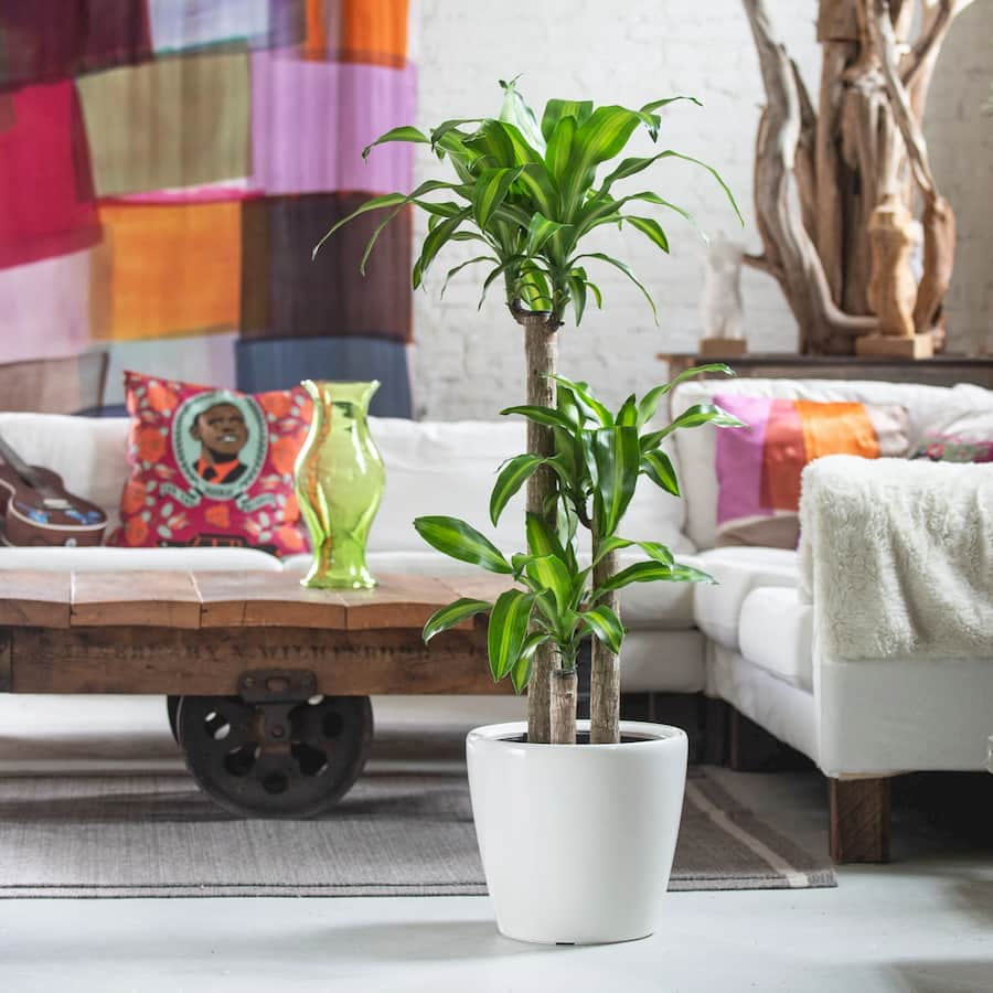 thi-cong-noi-that-penthouse-phong-cach-eco_03
